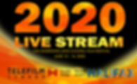 2020 poster -B (1).png