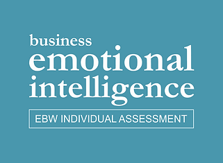 Business Emotional Intelligence Individual Assessment