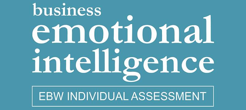 Business Emotional Intelligence Individual Assessment