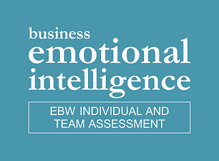 Business Emotional Intelligence Team Assessment