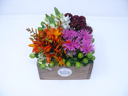 Colourful Small Bento Box of Flowers