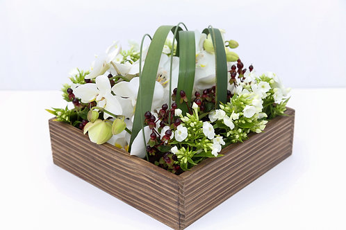 Luxury Design Large Bento Box