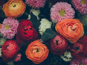 Let Flowers Symbolize Your New Year