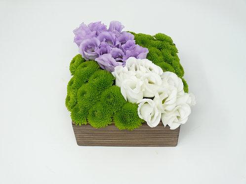 3 Flowers Small Bento Box of Flowers
