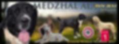 Ποιμενικοι Κεντρικης Ασιας, Ciobanesc de Asia Centrala, Central Asian Shepherd Dog,Středoasijský pastevecký pes, Turkmenský Alabaj, Közép-ázsiai Juhászkutyák; Owczarek Srodkowoazjatycki, Central Asian Ovcharka, Drok, Среднеазиатская овчарка, Pastore dell´Asia Centrale, Sage Mazandarani, Sredneasiatskaia Ovtcharka, Stredoázijský ovčiak, Mittelasiatischer Owtscharka, Central Asian Shepherd, Ovcharka , Central Asian Shepherd Dog , Zentralasiatischer Owtscharka, Alabai, Alabay, Alabaj, CAO, OWCZAREK ŚRODKOWOAZJATYCKI
