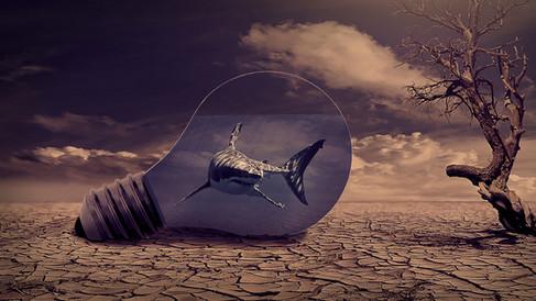 Fotomanipuliacija, fotomontažas, riklys, lemputė