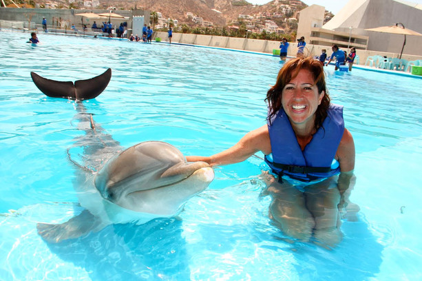 Swimming with a Dolphin!