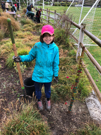 Volunteering with Sophia's School