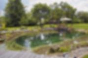 AGUA - piscina natural, depuración natural, macrofitas, piscinas acero inoxidable