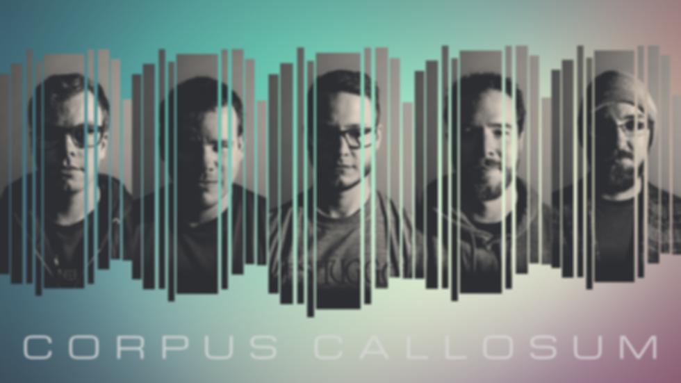 CORPUS CALLOSUM 4.png