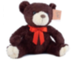 Charity Teddy.jpg