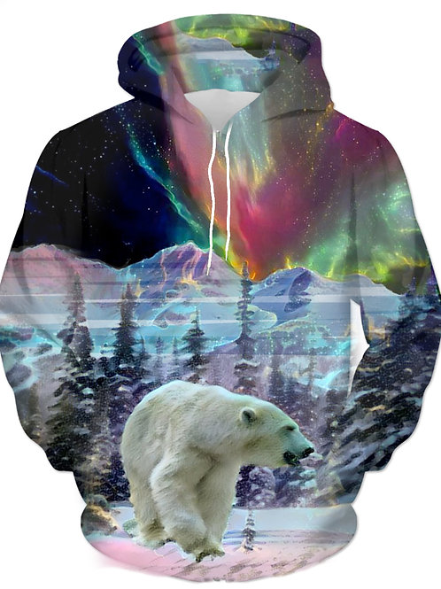 Northern Lights - 41030