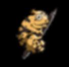 Chameleon_Logo.png