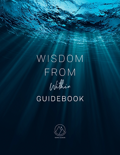 The Wisdom Within Cover.png