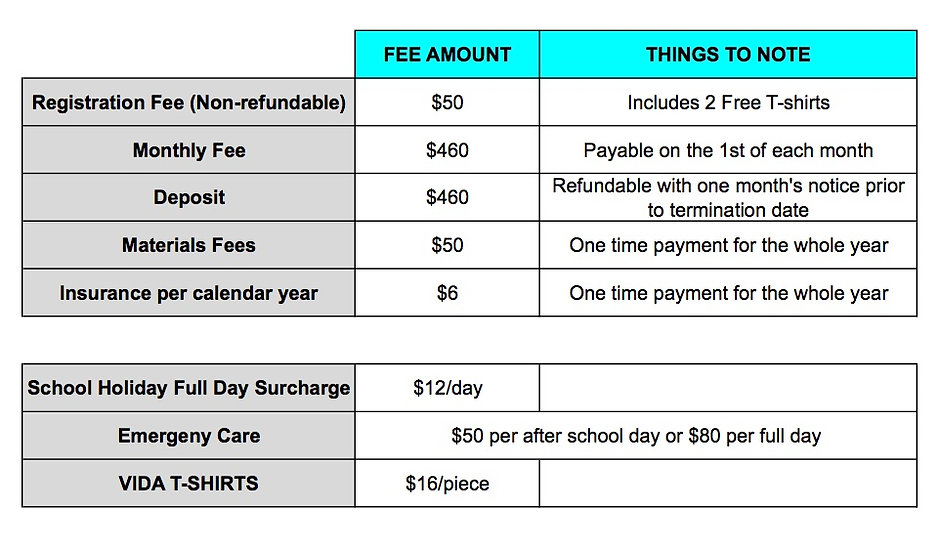 VIDA Course Fees.jpeg