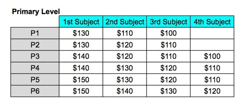 VIDA Tuition Price.jpeg