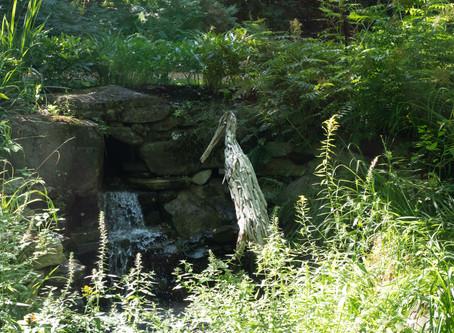 Le jardin de François à St-Sauveur
