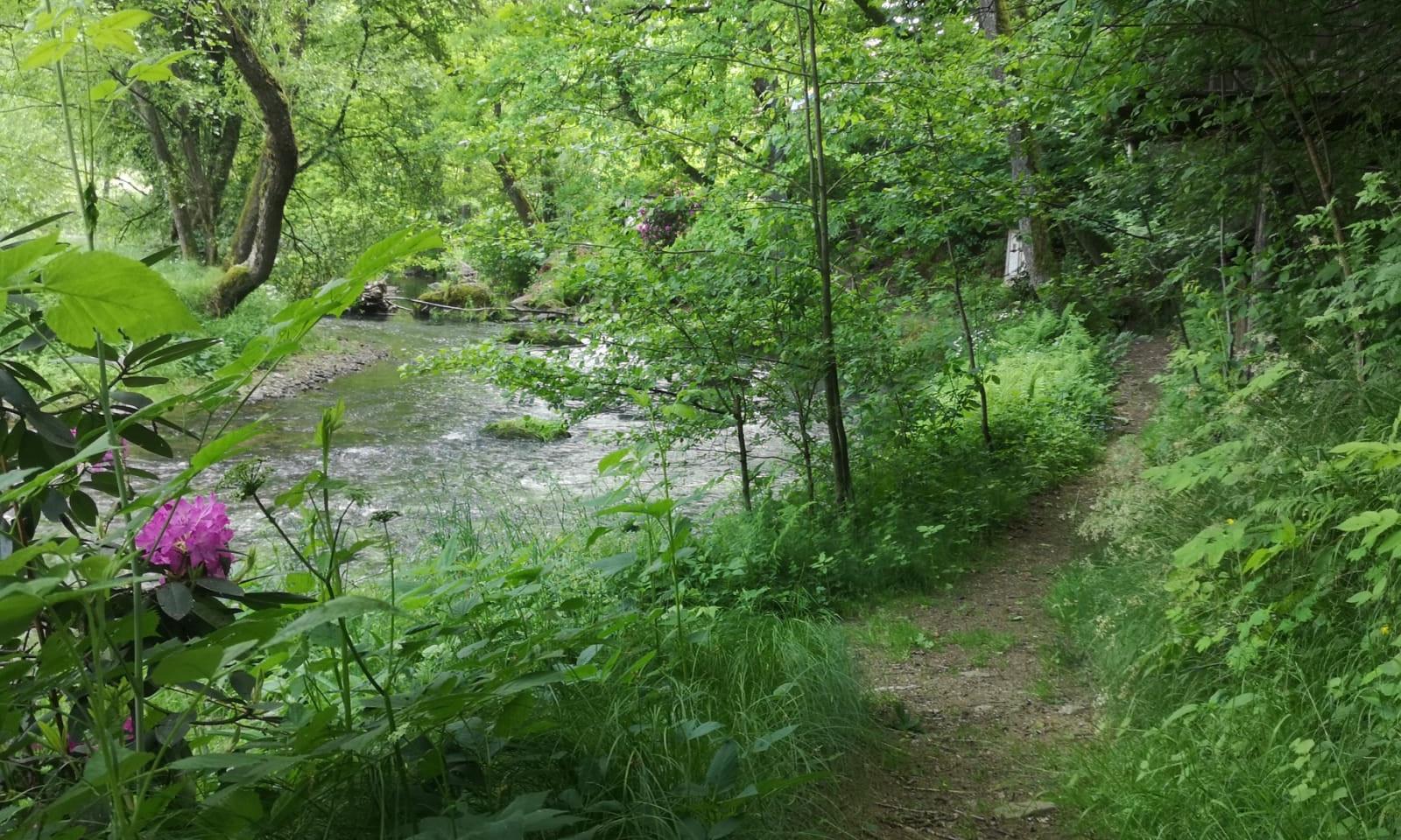 Rundweg am Fluss