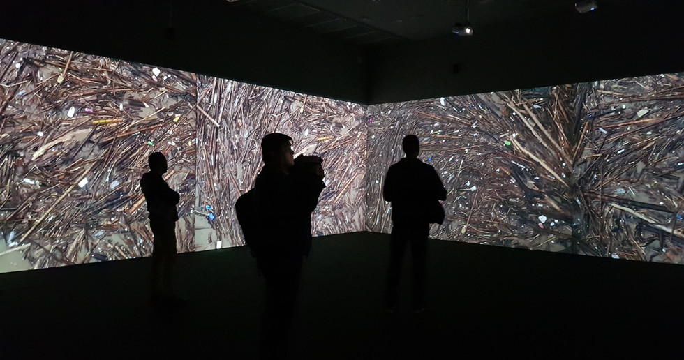Exposición Liminal, Clemencia Echeverri, Museo de Arte Miguel Urrutia