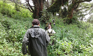 North-West Adventure by Countryside Tours-Rwanda