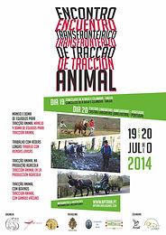 II Cross-border Meeting of animal Traction