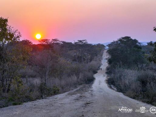 The Road to Fiwila
