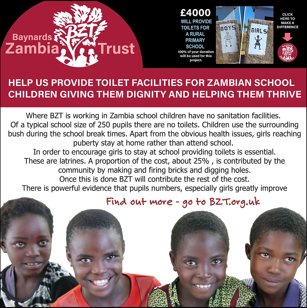 Advert for the BZT toilet facilities campaign