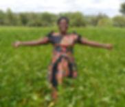 Successful Zambian Harvest