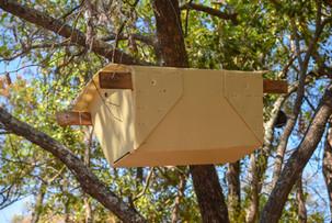 Beehives in Kalubula