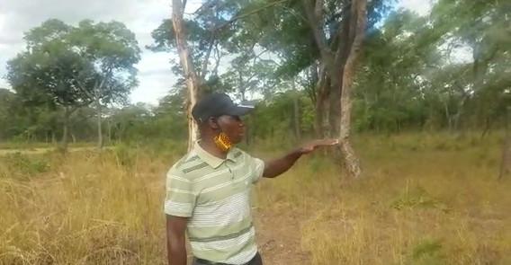 Chibombo Beekeeping assesment.mp4