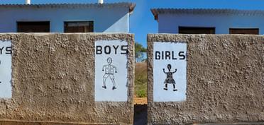 Toilet Blocks.