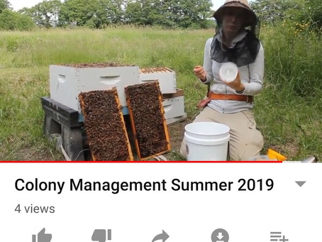 Colony Management!