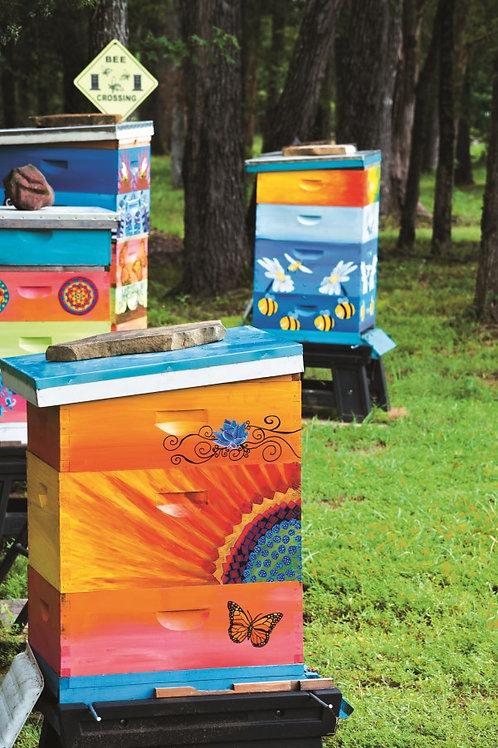 Paint a Hive Workshop - 2/13/21 - 6-8pm