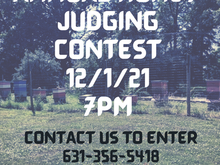 Beez' First Annual Holiday Honey Judging Contest!