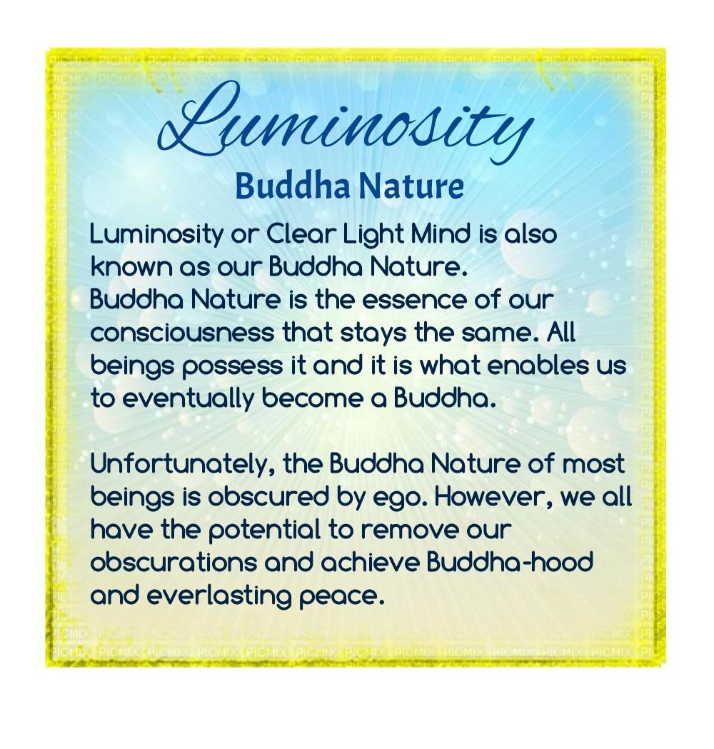 Buddhist teaching on luminosity
