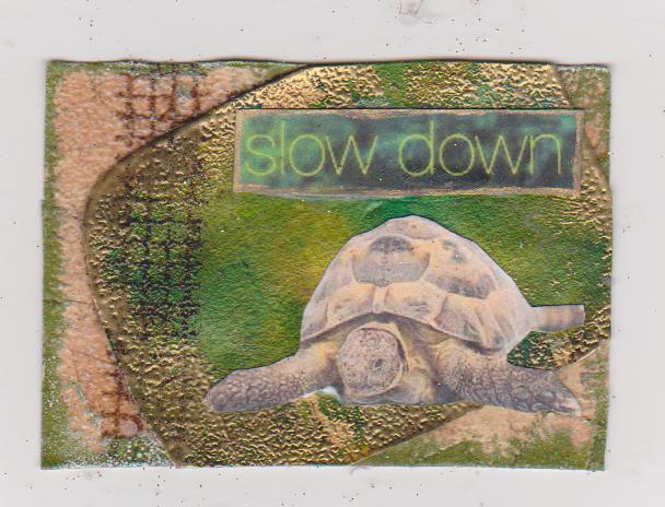 Tortoise Artist Trading Card