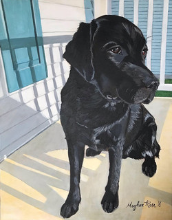 Black Lab Pet Portrait