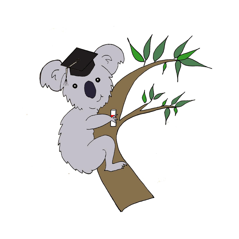 Koala-fications