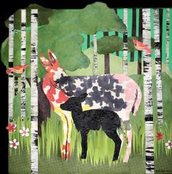 Deer in Woods