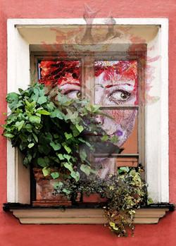 Fenster1Kombi