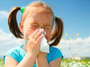 Allergy Busting Window Coverings.