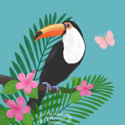 Heather Anderson Toucan