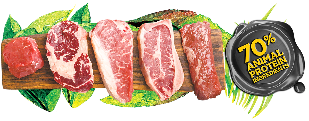 P_Meats 70%.png