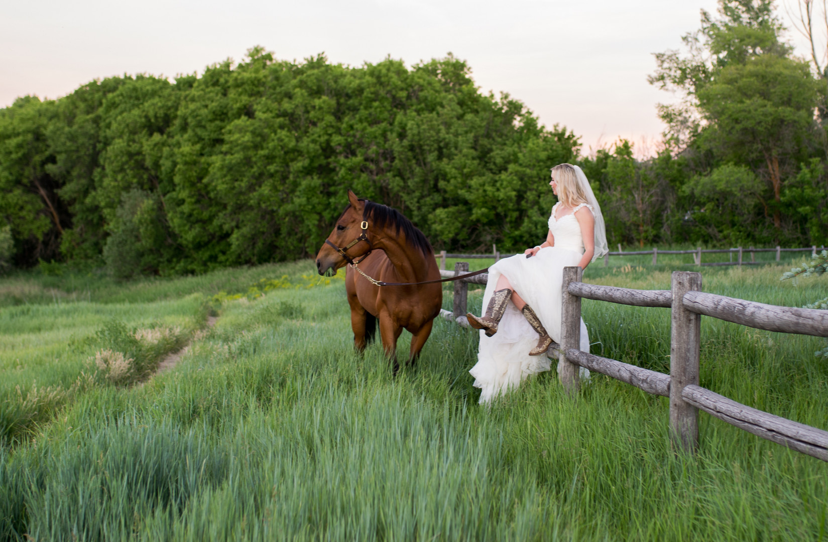 Spring Bridals- cowboy boots and a horse