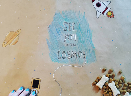 """""""See You in the Cosmos"""" Book Review"""