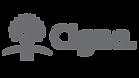 5d07eb53fd6f22c5826b2953_logo-cigna.png