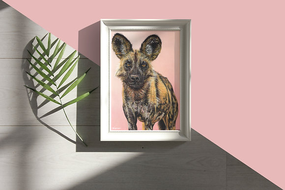 Original Drawing African Wild Dog