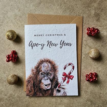 Plantable Collection Orangutan Christmas Card - No Waste Eco-friendly