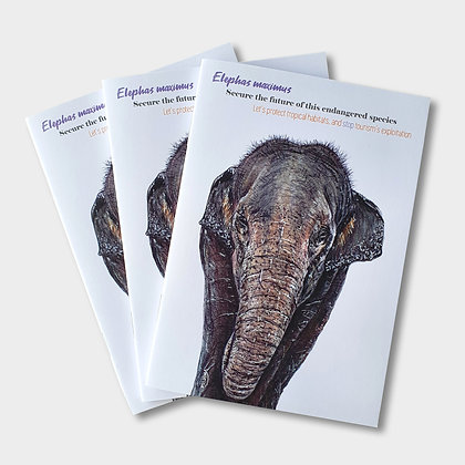 Elephant A6 Notebook - Supports Conservation Charity