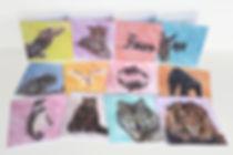 Blank-Greetings-Cards-Wildlife-Art.jpg